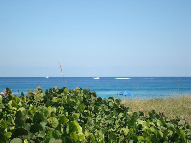 Delray Beach Oceanfront Estate