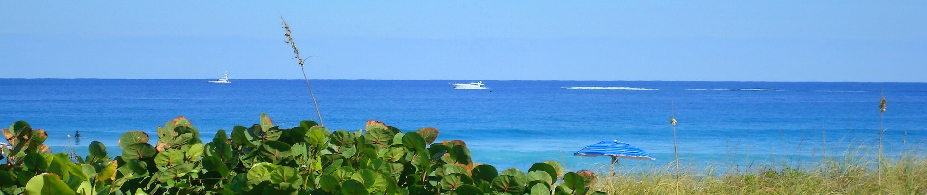 Luxury Resort Portfolio - Palm Beach County Oceanfront Estates For Sale
